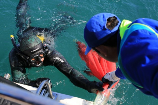 Ortakent deniz dibi temizligi